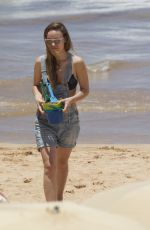OLIVIA WILDE in Bikini Top at a Beach in Hawaii 04/17/2016