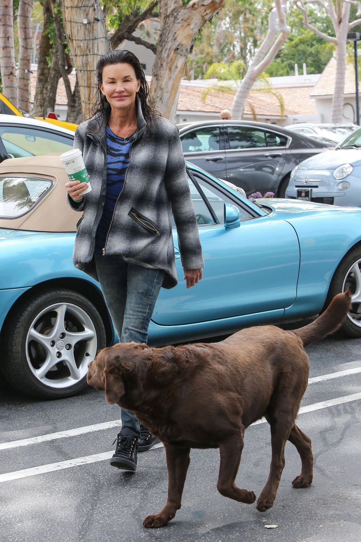 JANICE DICKINSON Walks Her Dog at Beverly Glen Mall 04/26/2016