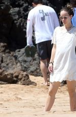 OLIVIA WILDE at a Beach in Maui 04/16/2016