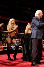 WWE - aw Digitals 04/04/2016