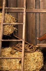 WWE - Cowgirls Photoshoot