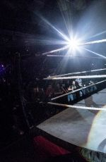 WWE Live Event in Belfast