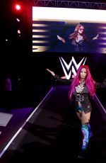 WWE - Live in Milan, Italy