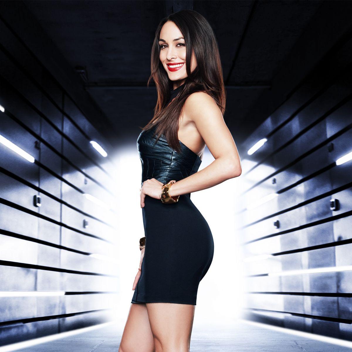 The Best Of Brie Bella