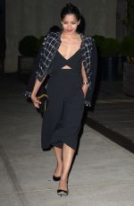FREIDA PINTO Night Out in New York 04/30/2016
