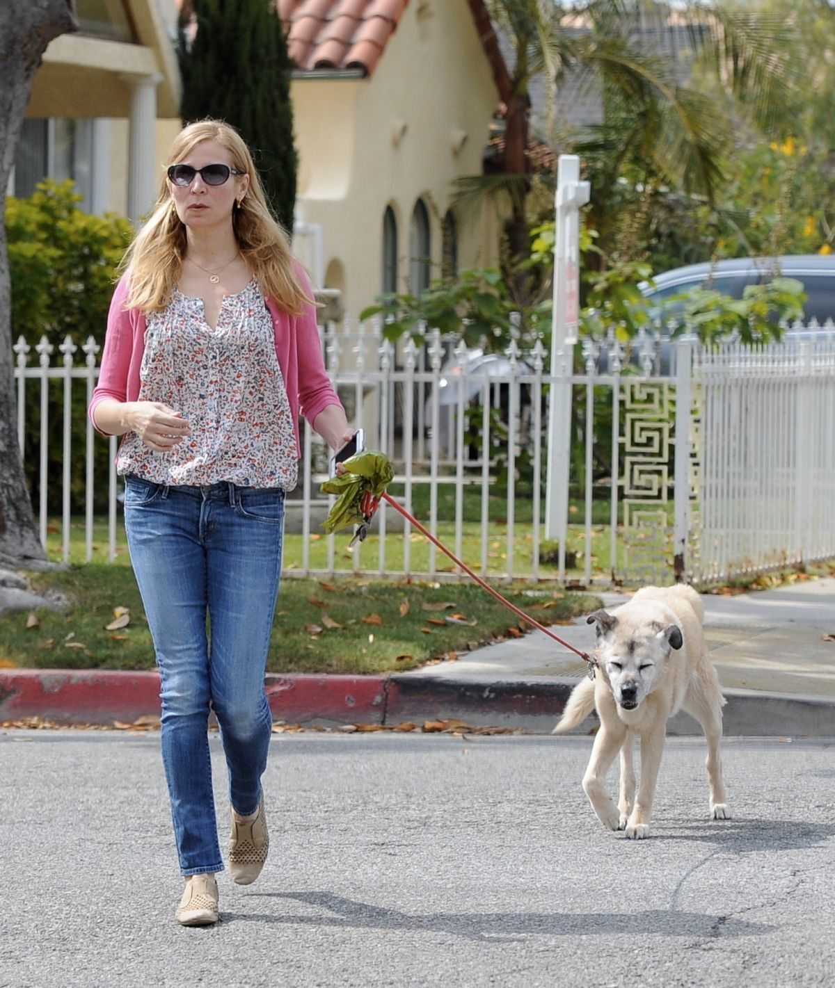 JENNIFER WESTFELDT Walks Her Dog Out in Los Angeles 05/24/2016