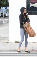 ALESSANDRA AMBROSIO Out in Los Angeles 06/13/2016