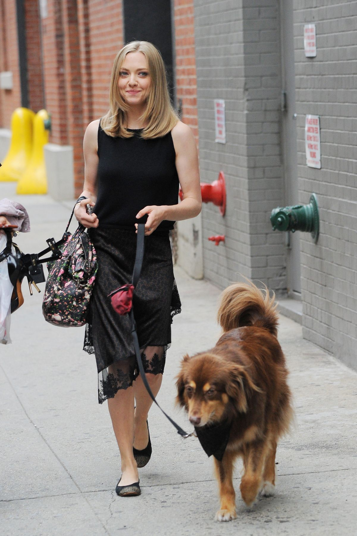 AMANDA SEYFRIED and Finn Out in New York 06/28/2016