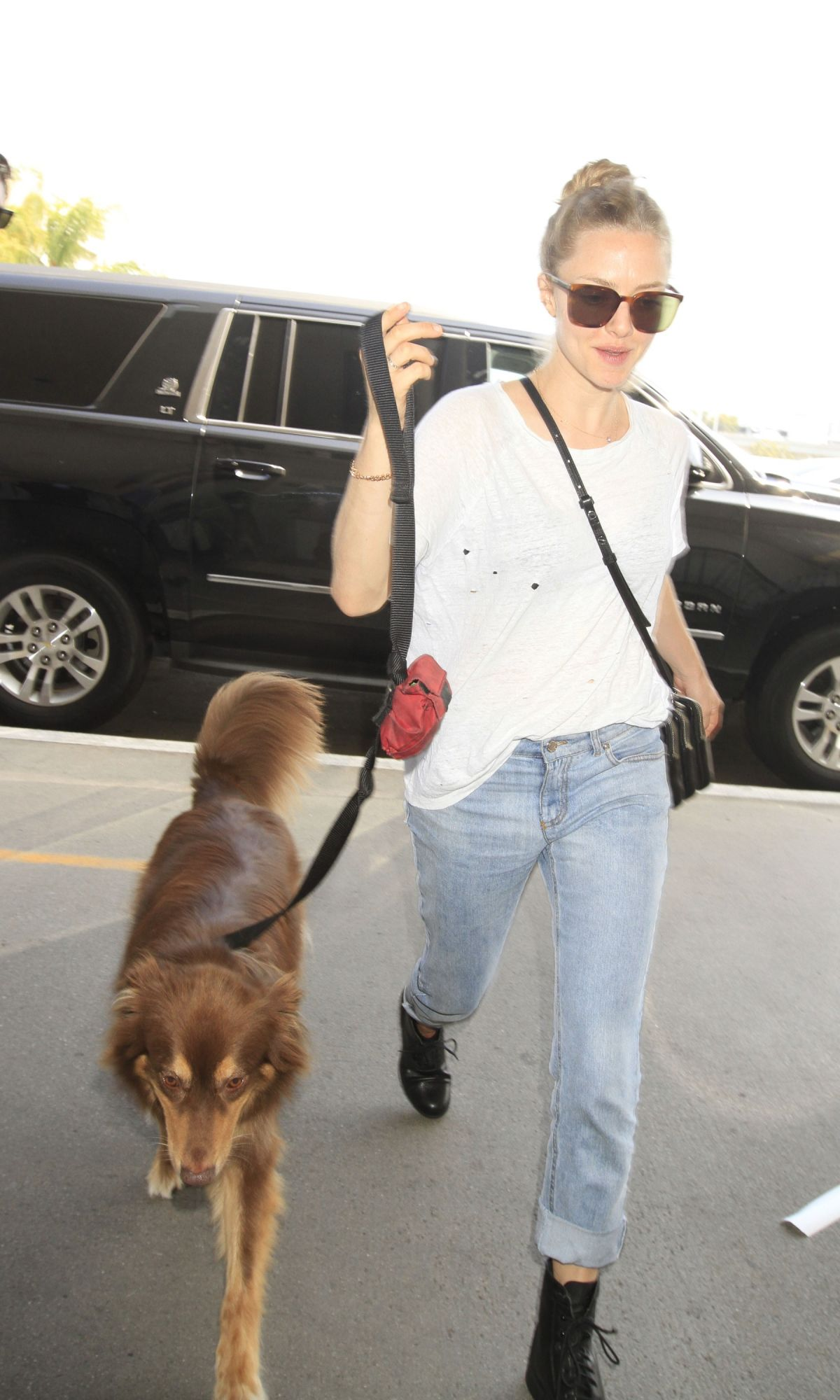 AMANDA SEYFRIED and Her Dog Finn at LAX Airport 06/27/2016