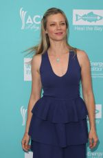 AMY SMART at Heal the Bay's Annual Bring Back the Beach Gala in Santa Monica 06/09/2016