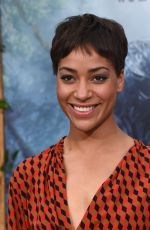 CUSH JUMBO at 'The Legend of Tarzan' Premiere in Hollywood 06/27/2016