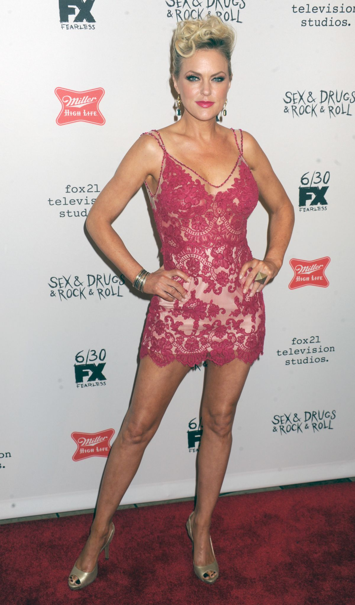 ELAINE HENDRIX at Sex & Drugs & Rock & Roll Season 2 Premiere 06/28/2016