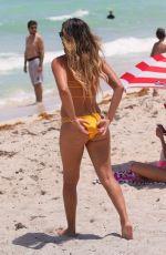 ANASTASIA ASHLEY in Bikini on the Beach in Miami 07/16/2016