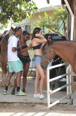 KENDALL JENNER at Horseback Riding at a Beach in Turks and Caicos 08/13/2016