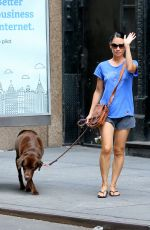 LUCY LIU Walks Her Dog Out in New York 08/14/2016