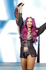 WWE - Live in Auckland, New Zealand 08/10/2016