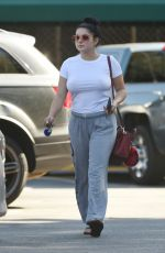 ARIEL WINTER Shopping Grocery in Los Angeles 09/17/2016