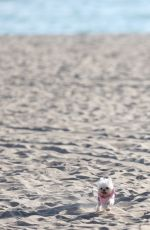 COURTNEY STODDEN Kissing a Mystery Woman on the Beach in Los Angeles 09/15/2016