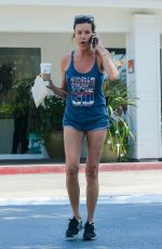 JANICE DICKINSON Out for Coffee in Beverly Hills 09/03/2016