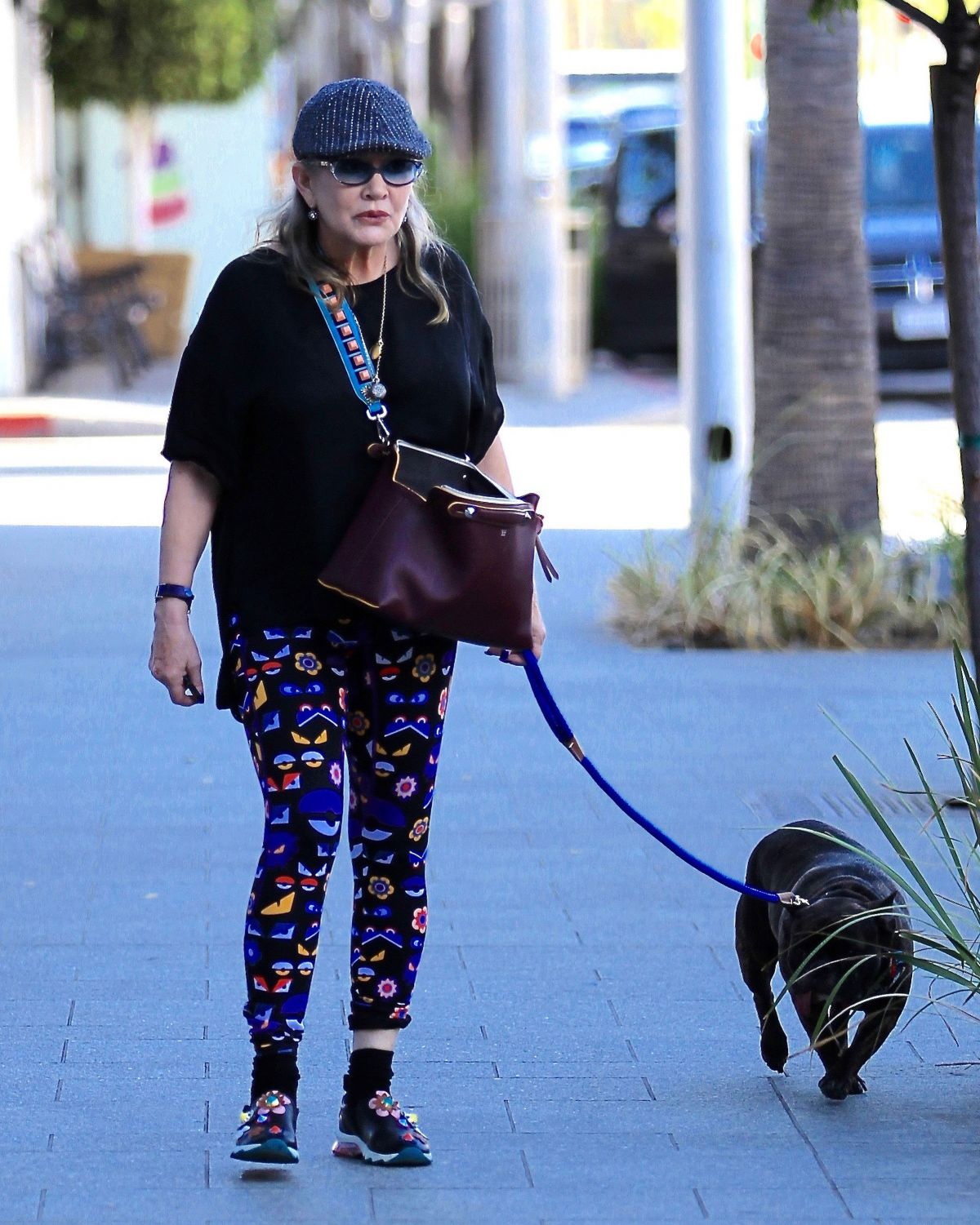 CARRIE FISHER Walks Her Dog Out in Los Angeles 09/29/2016