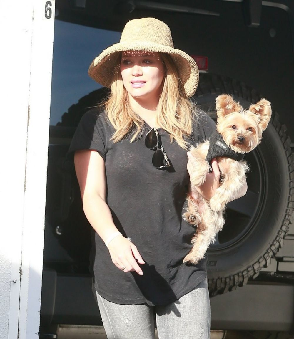 HILARY DUFF Out with Her Dog in west hollywood 10/09/2016