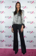 LAIS RIBEIRO at Breast Cancer Research Foundation