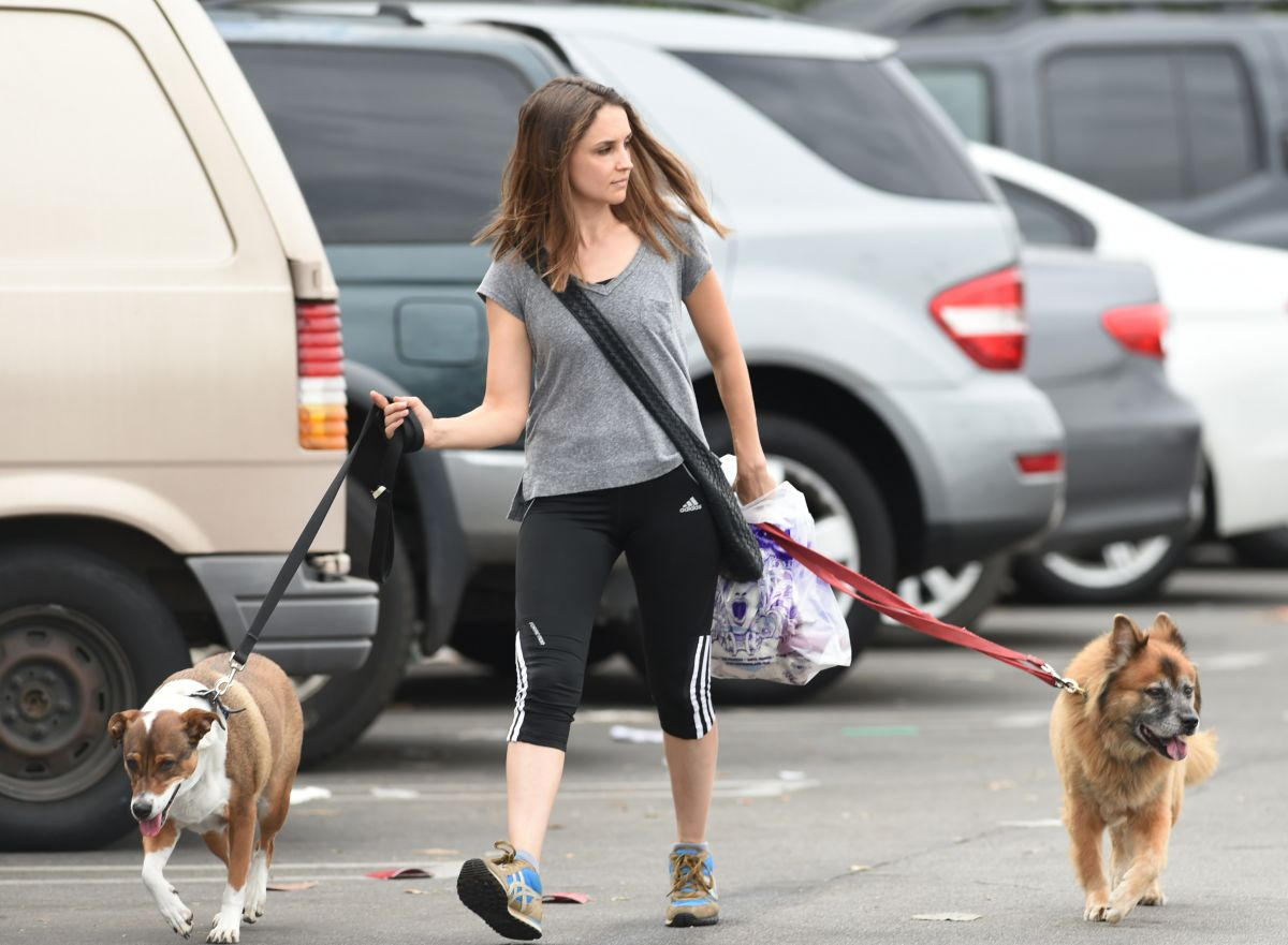 RACHAEL LEIGH COOK Walks Her Dogs Out in Los Angeles 10/27/2016