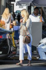 ALI LARTER Out Shopping in Los Angeles 11/29/2016