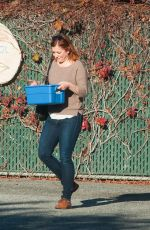 ALYSON HANNIGAN Out Shopping in Los Angeles 11/04/2016