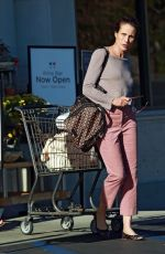 ANDIE MACDOWELL Out Shopping at Gelson