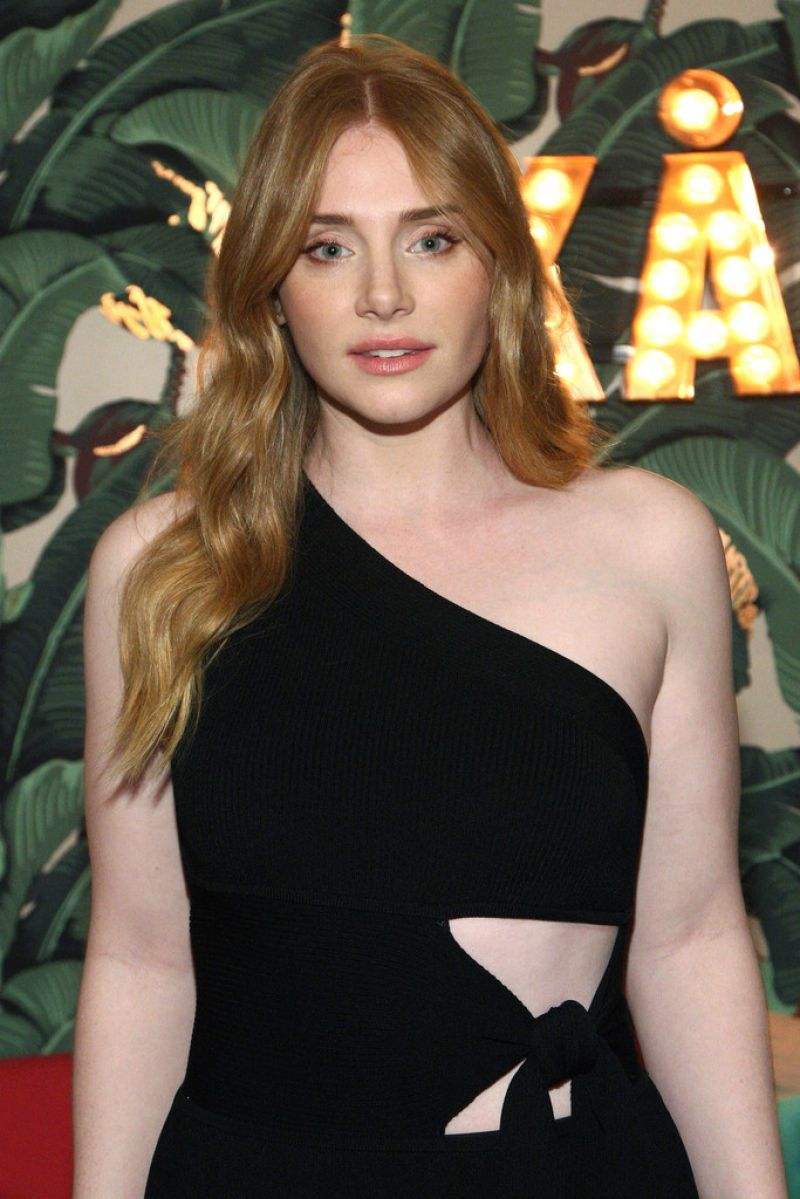 BRYCE DALLAS HOWARD at TWC Dimension Celebrates the Cast and Filmmakers of