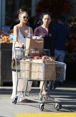 CHRISSY TEIGEN Out Shopping in West Hollywood 11/24/2016