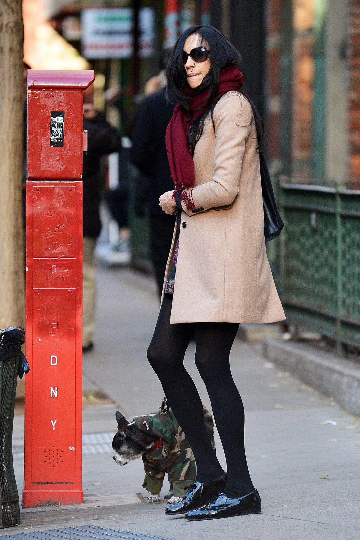 FAMKE JANSSEN Walks Her Dog Out in New York 11/27/2016