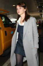 FELICITY JONES at Los Angeles International Airport 11/08/2016