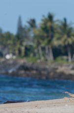 IRELAND BALDWIN in Bikin on the Set of a Photoshoot in Hawaii 11/17/2016