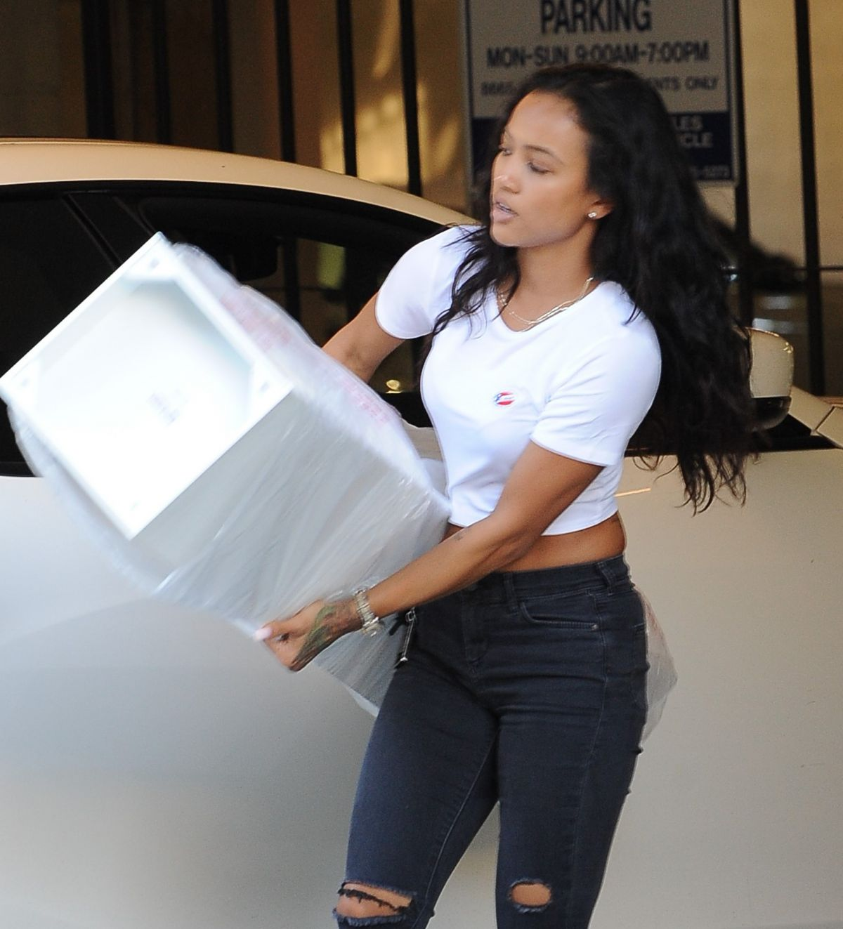 KARREUCHE TRAN Pulling a Huge Box Out of Her Car in Los Angeles 11/08/2016
