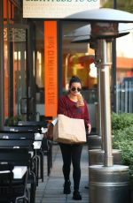LEA MICHELE Out for Lunch in Beverly Hills 11/21/2016