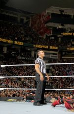 WWE - Survivor Series 2016 Digitals