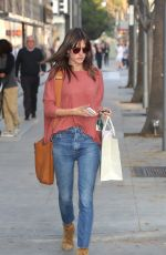 ALESSANDRA AMBROSIO Out Shopping in Beverly Hills 12/14/2016