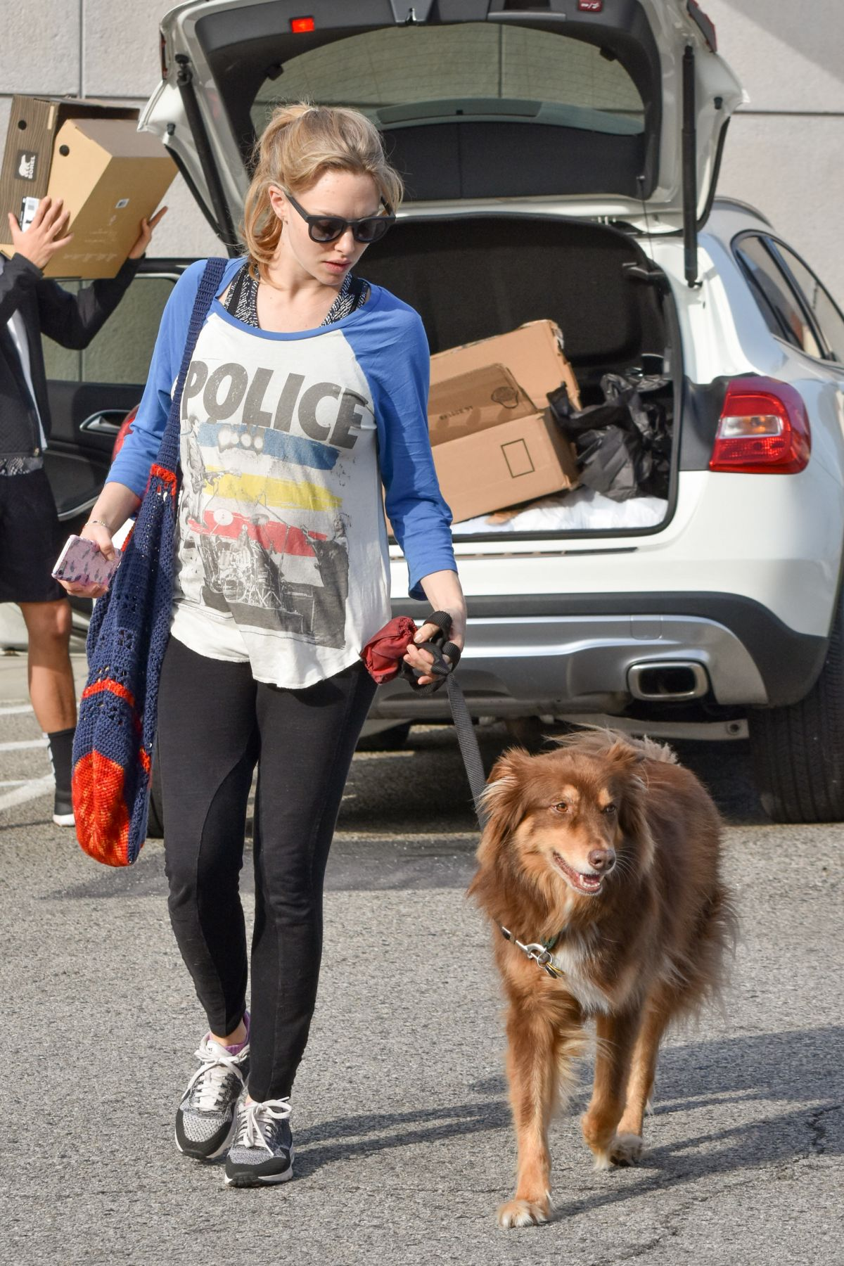AMANDA SEYFRIED and Her Dog Finn Out in Los Angeles 12/14/2016