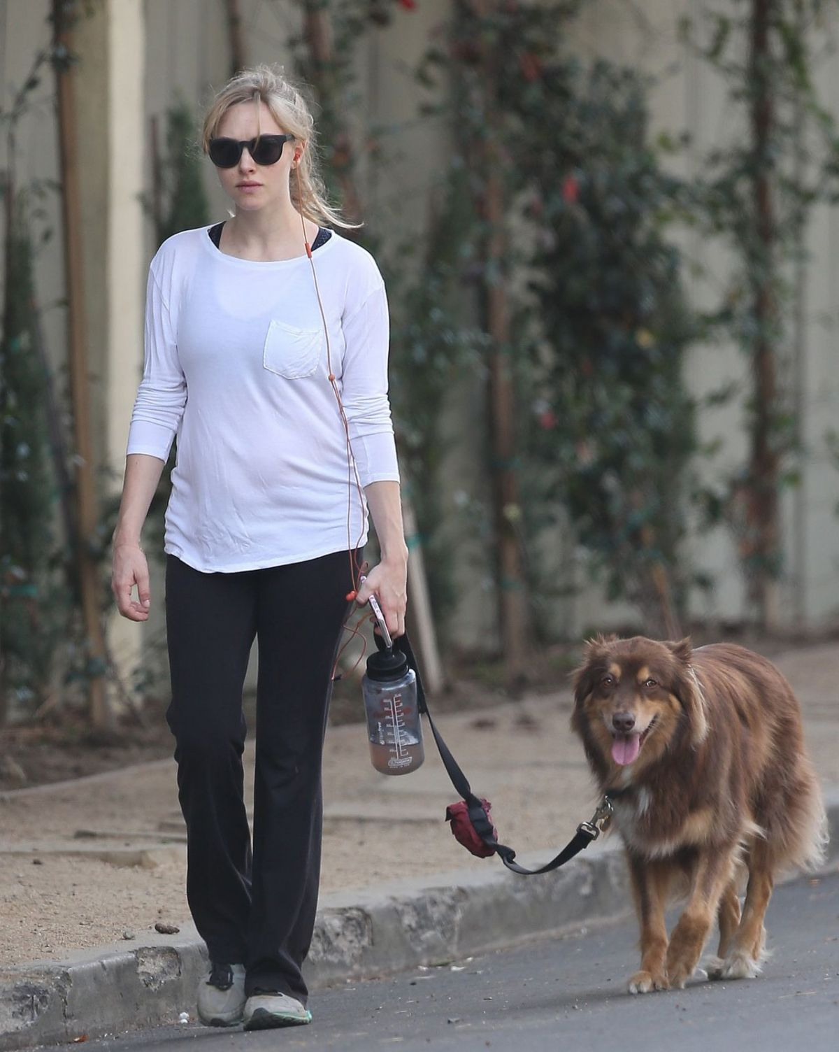 AMANDA SEYFRIED Out with Her Dog in Los Angeles 12/07/2016