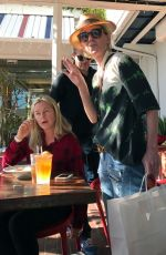 ANNE HECHE Out for Lunch in West Hollywood 12/19/2016