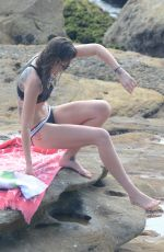 CATHERINE MCNEIL in Bikini at Bondi Beach 12/29/2016