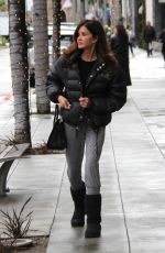 JANICE DICKINSON Out Shopping in Beverly Hills 12/22/2016