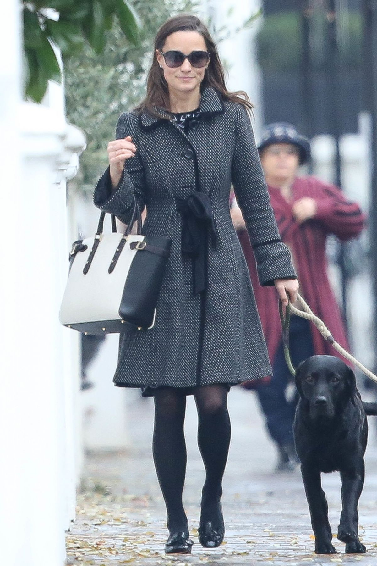 PIPPA MIDLETON Walks Her Dog Out in London 12/13/2016