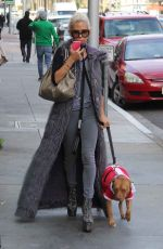 SHAUNA SAND Walks Her Dog Out in Beverly Hills 12/08/2016