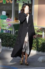 VANESSA HUDGENS Out and About in Los Angeles 12/14/2016