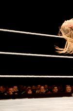 WWE - Live in Vienna, November 2016