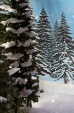 WWE - Winter Wonderland