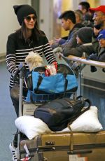 ABIGAIL SPENCER at Airport in Vancouver 01/03/2017